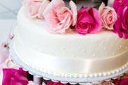 CakeBoss Sponge Cake